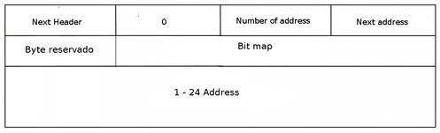 Linux: Datagramas