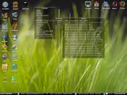 Linux: fluxbox vista
