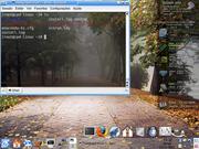 Linux: Fedora 7