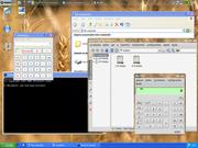 Linux: Big linux + Virtual Box = Windows em modo seamles