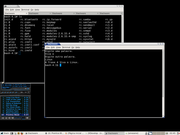 Linux: Slackware 13.1 com Xfce