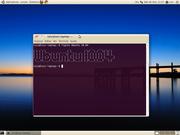 Linux: Ubuntu 10.04