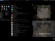 Ubuntu 10.04 x Gnome Shell
