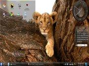 Linux: Metamorphose 3.0 Lion