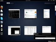Linux: Fedora 15 + Gnome 3