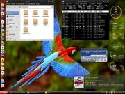 Linux: Debian-LXDE-Zukitwo