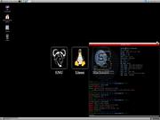 Linux: Slackware 12