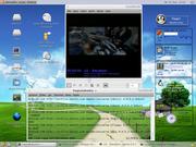 Linux: Ubuntu 6 + gDesklets + gxine + gnome