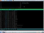 Linux: 6 meses ligado
